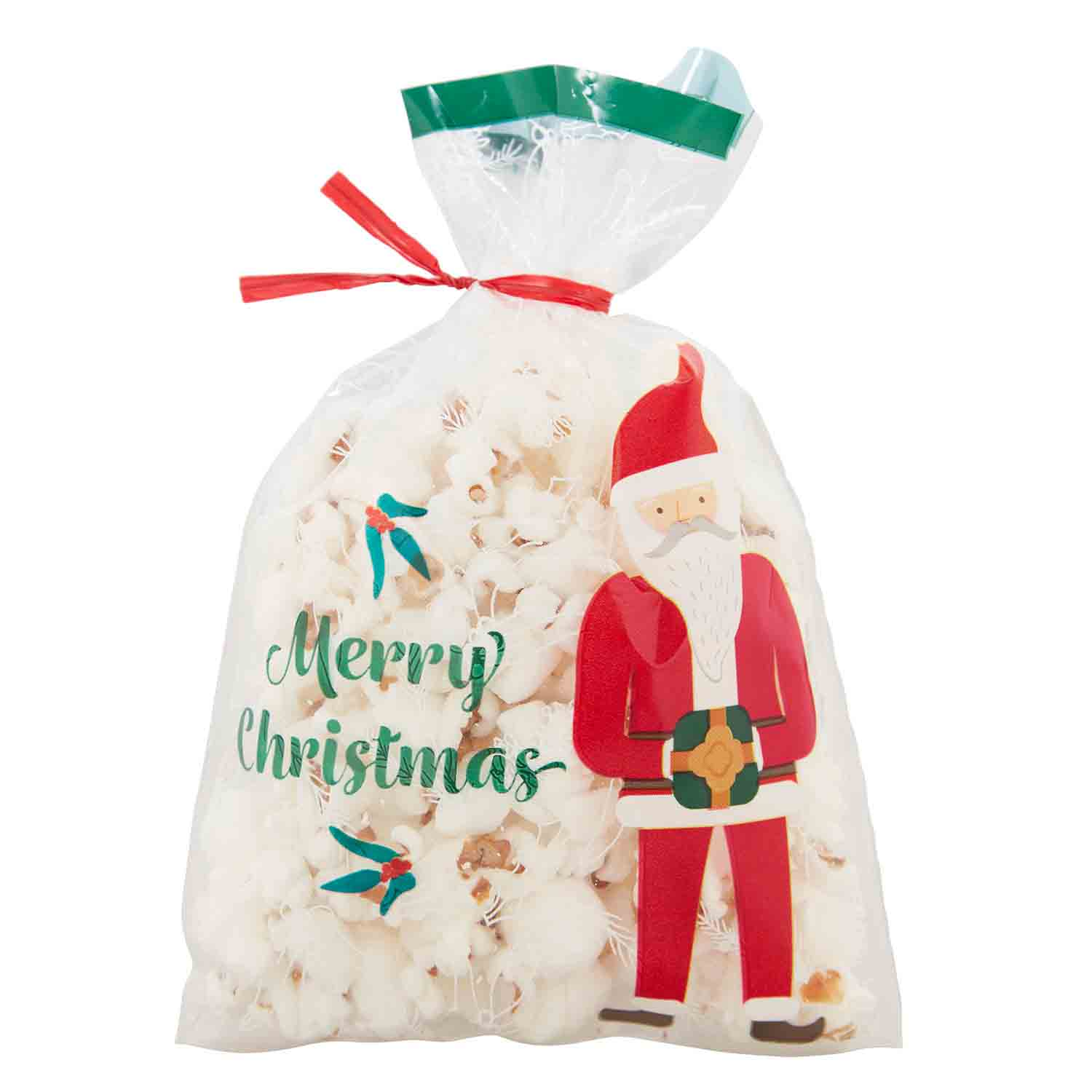 Santa Mini Treat Bags