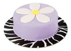 "12"" Zebra Cake Cardboards"