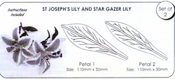 JEM St Joseph's Lily and Star Gazer