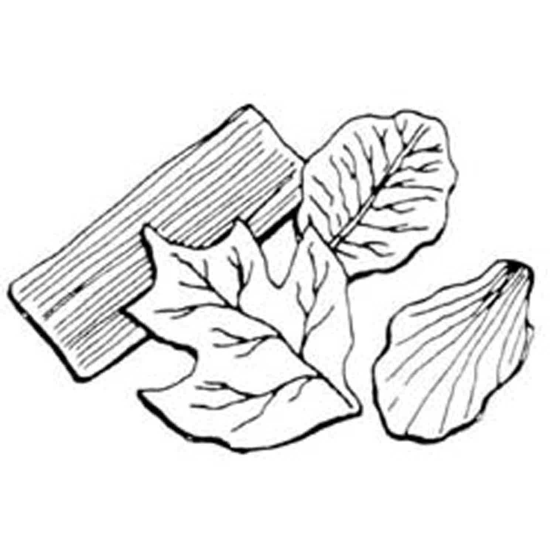 Gumpaste Leaf Veiner Set (B)