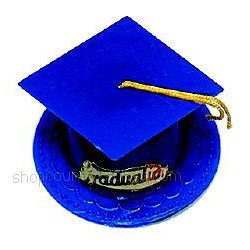 Graduation Cake and Cupcake Toppers and Decorations