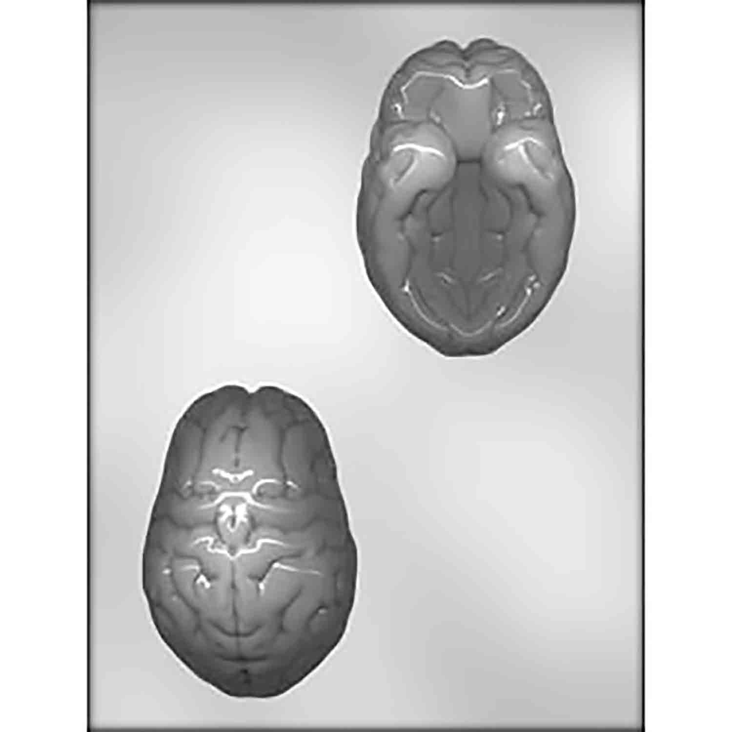 3-D Brain Chocolate Candy Mold