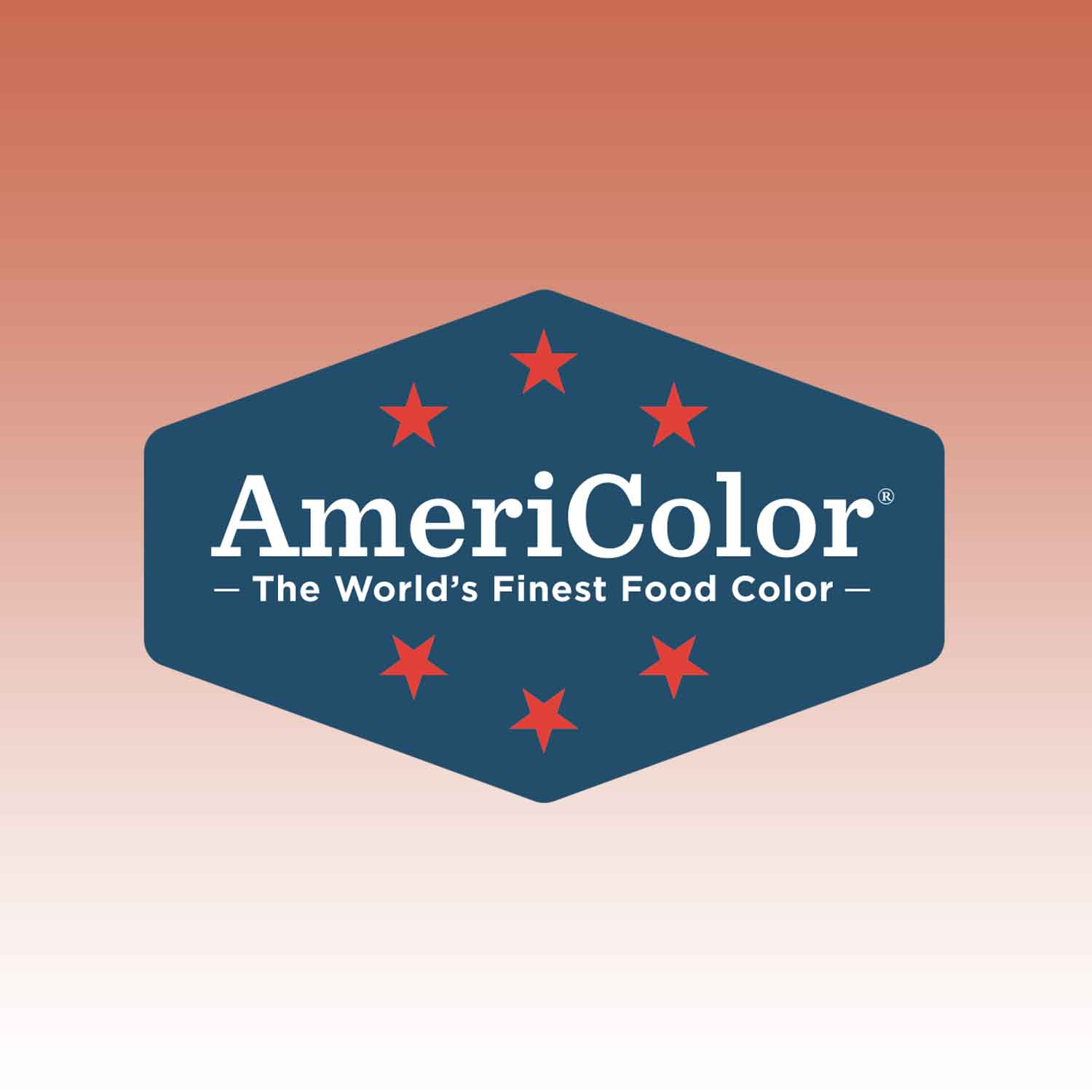 Terracotta AmeriColor® AmeriMist™ Air Brush Food Color