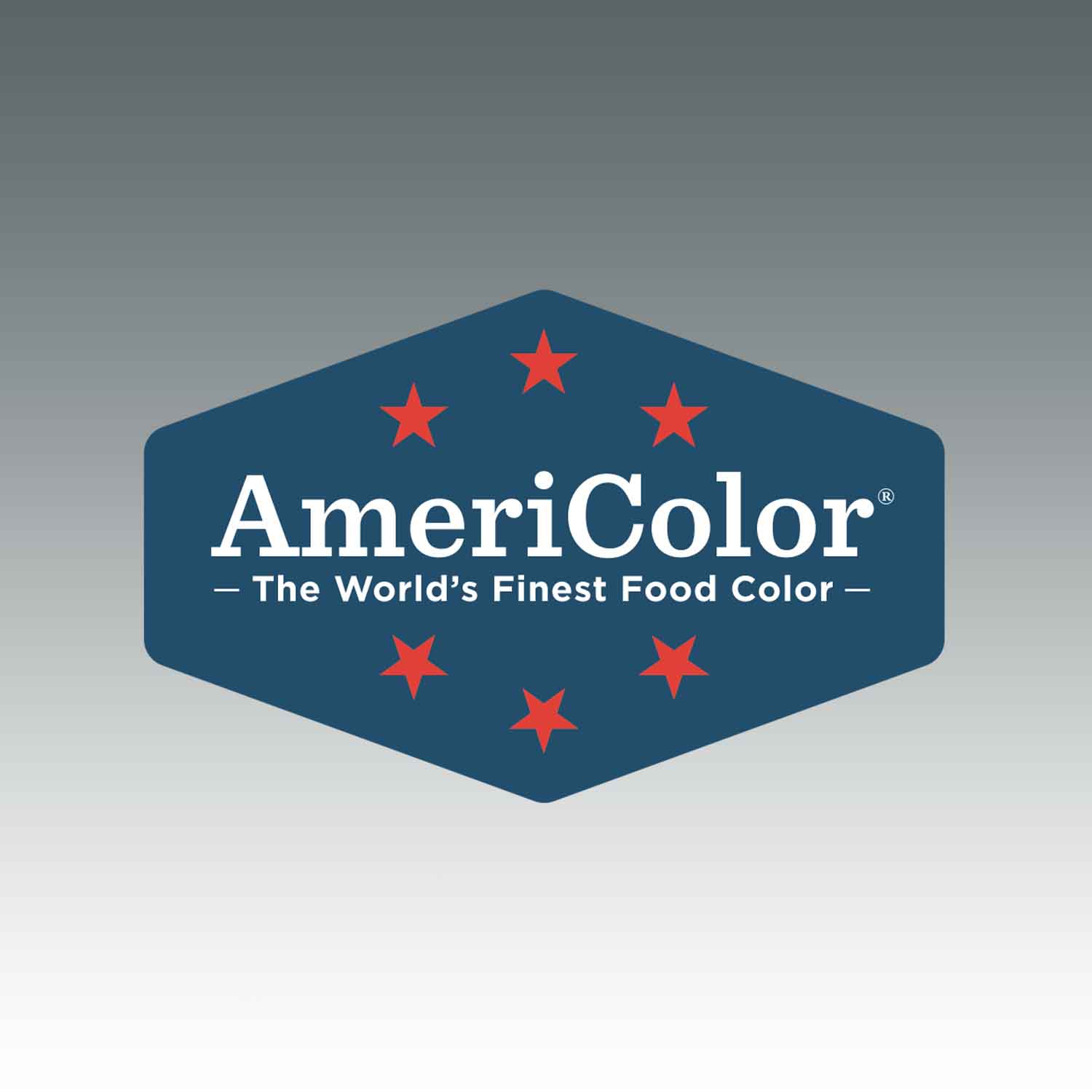 Stone AmeriColor® AmeriMist™ Air Brush Food Color