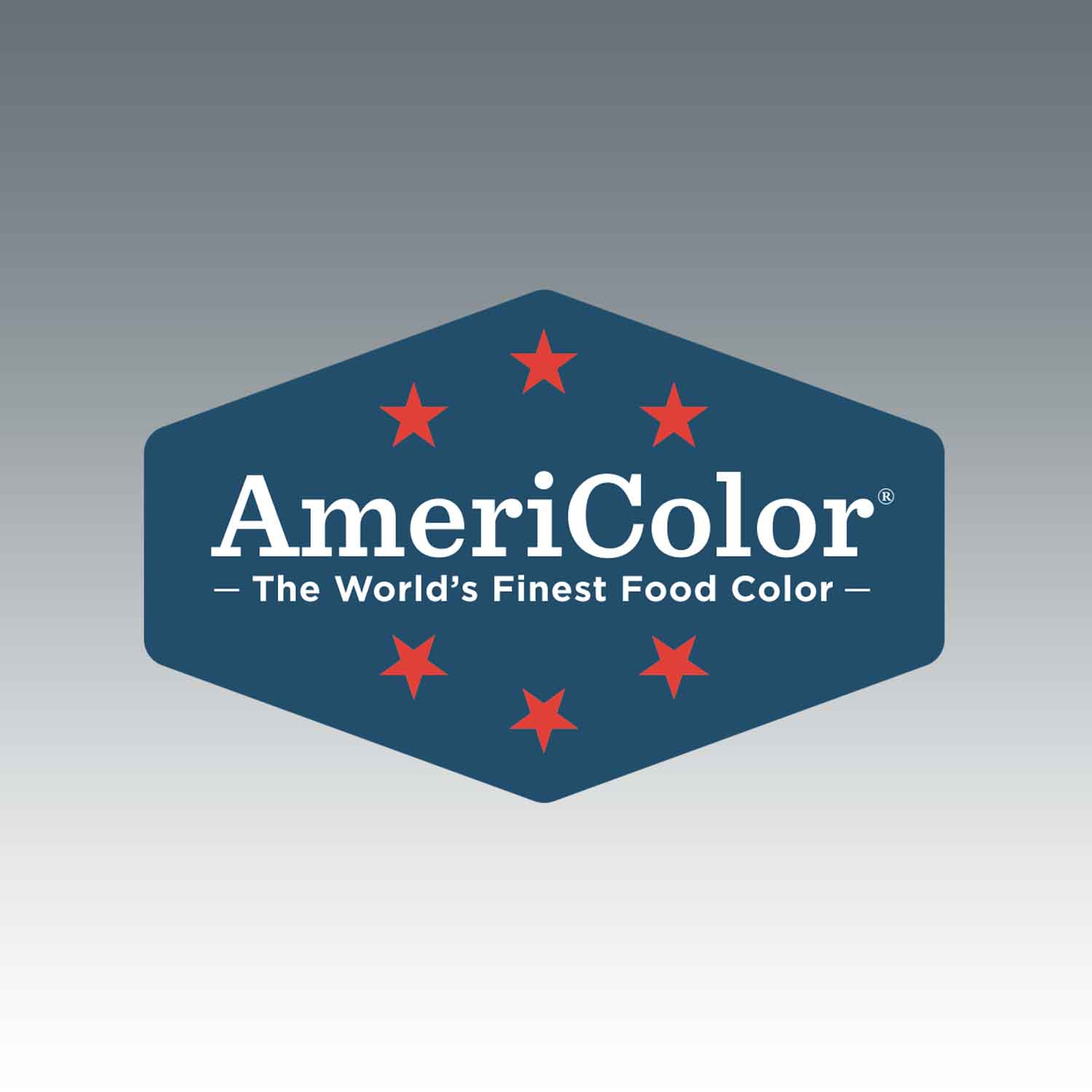 Slate AmeriColor® AmeriMist™ Air Brush Food Color