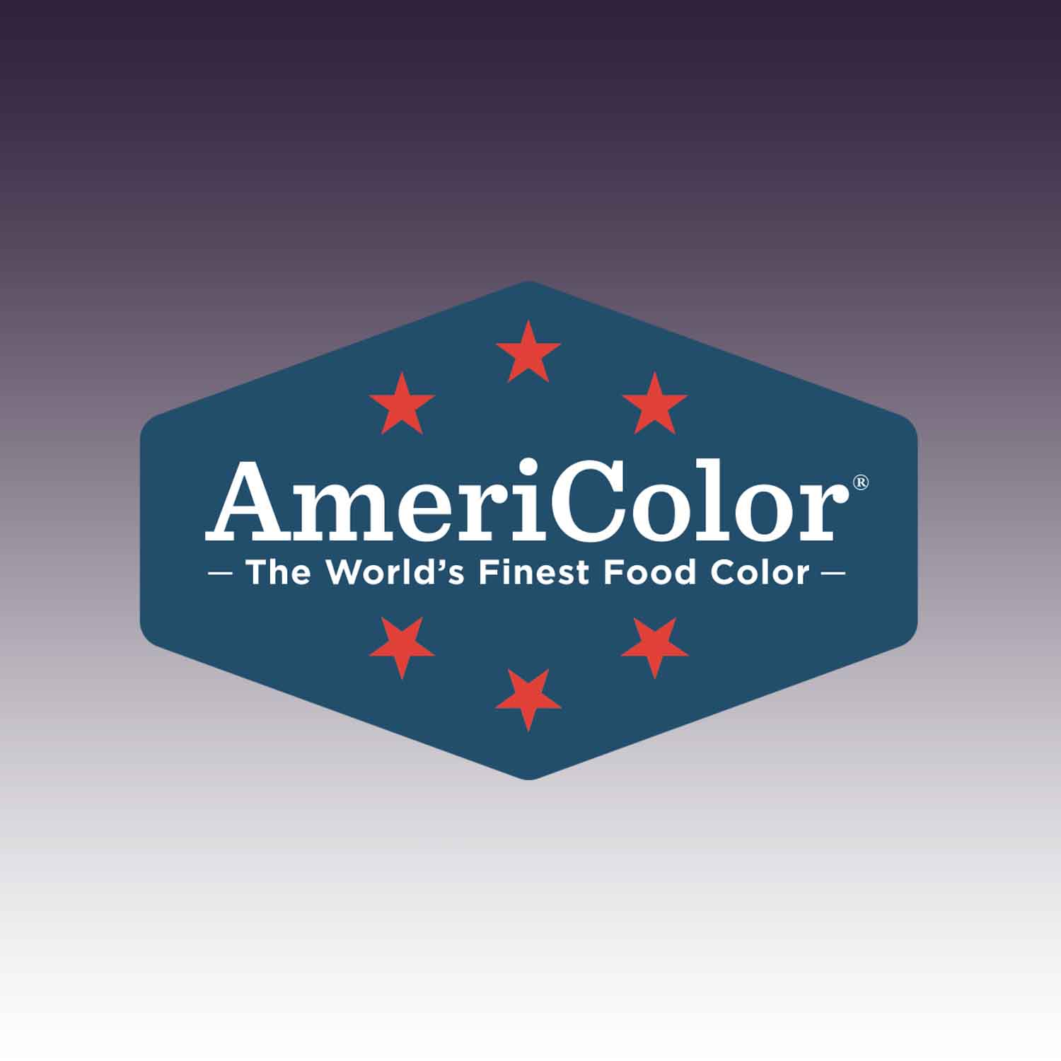 Eggplant AmeriColor® AmeriMist™ Air Brush Food Color