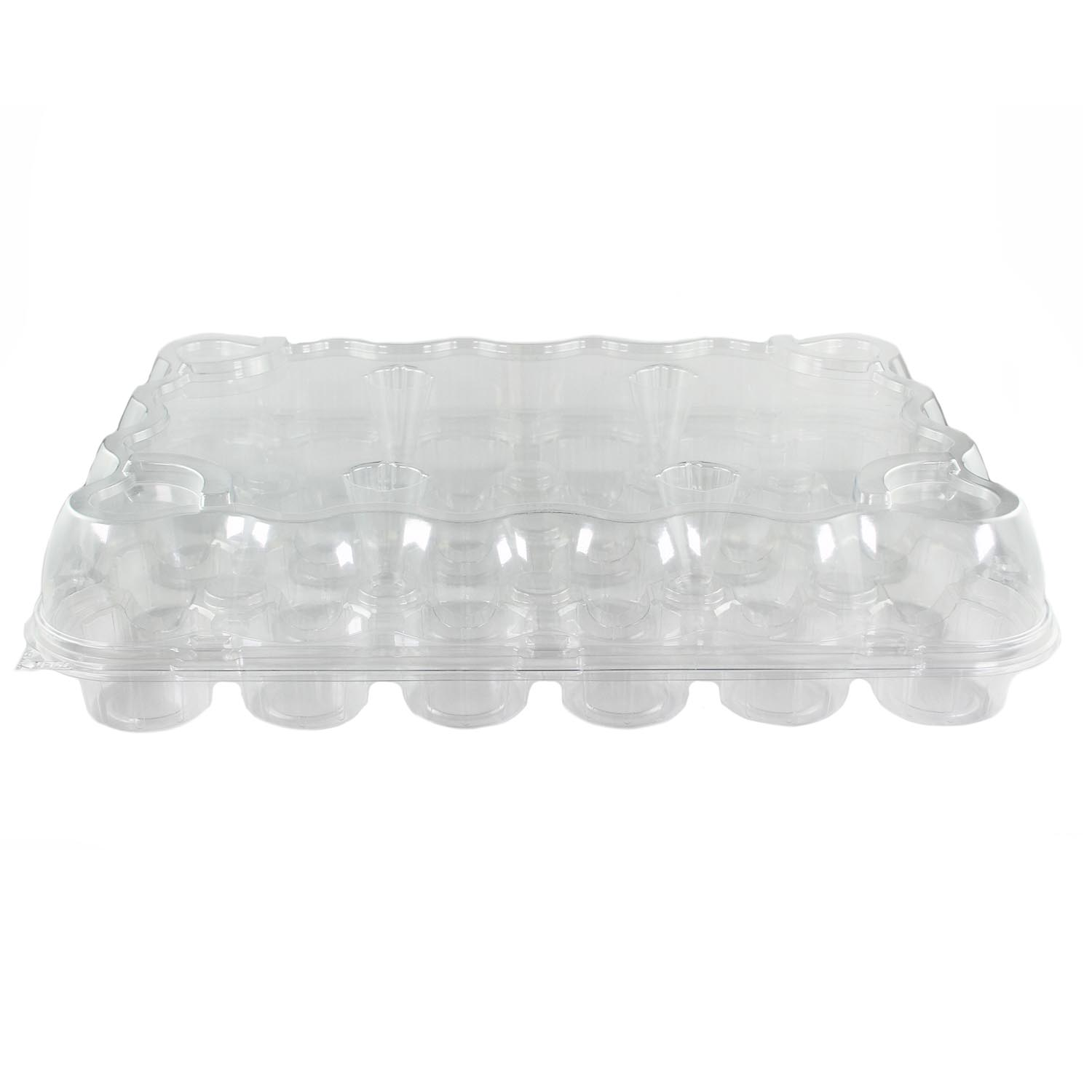 Plastic Container- Holds 24 Standard Size Cupcakes
