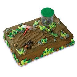 Cake Kit- Bug Collection