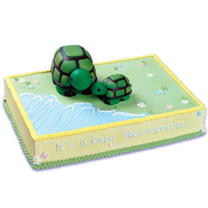 Momma and Baby Turtle Cake Kit