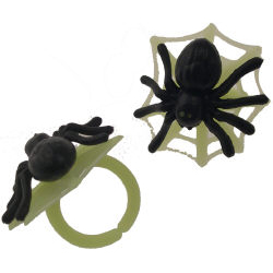 Spider on Web Rings