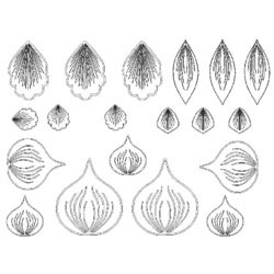 Gelatin Veining Sheet- Flower 3