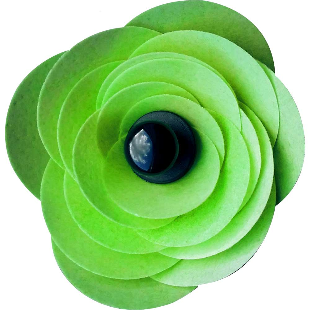 Green Ranunculus Edible Wafer Flower Kit