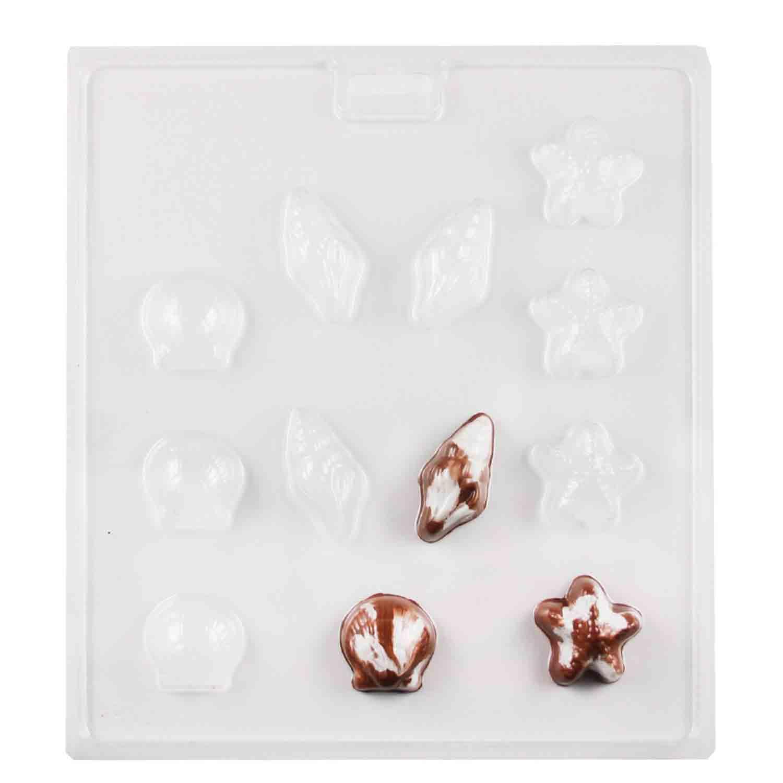 Seashell Bon Bon Chocolate Candy Mold