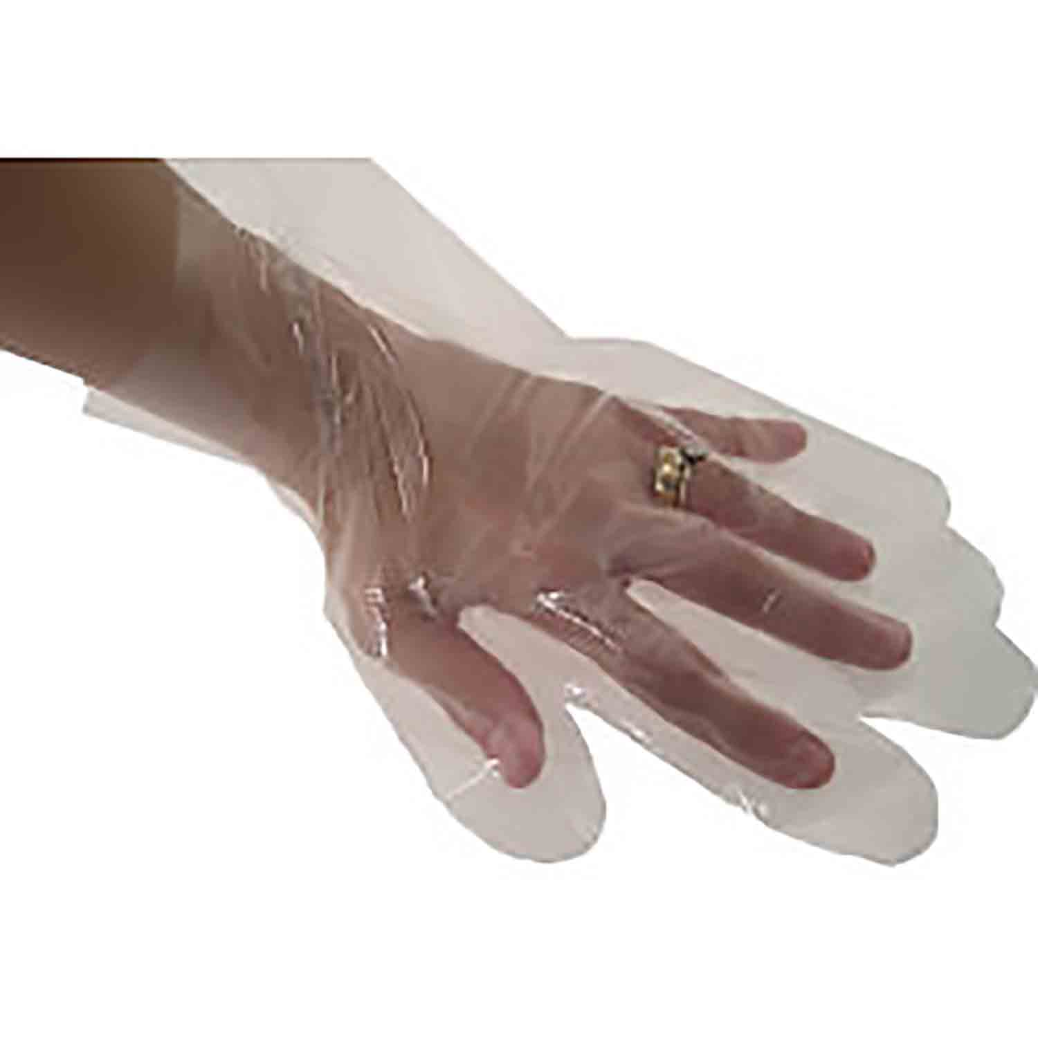 Bulk Plastic Gloves-Large