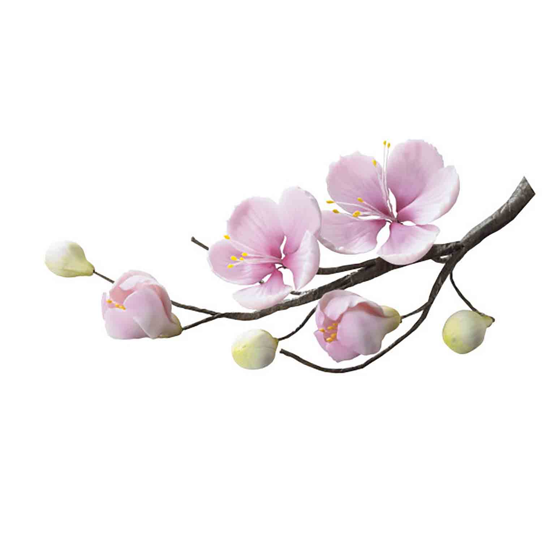 Gum Paste Cherry Blossom Spray