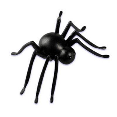 3D Spider Layon