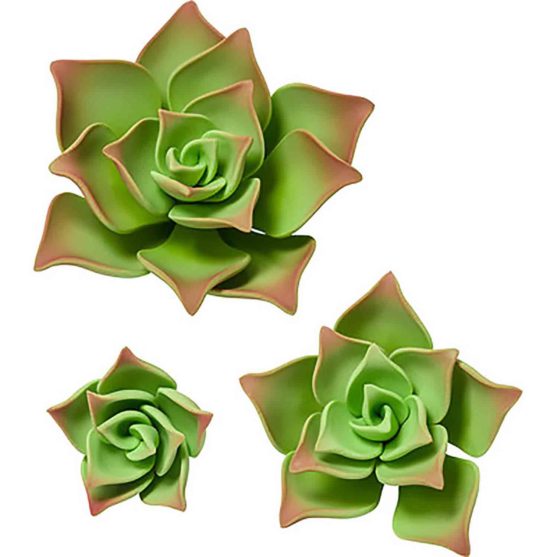 Green Gum Paste Succulents