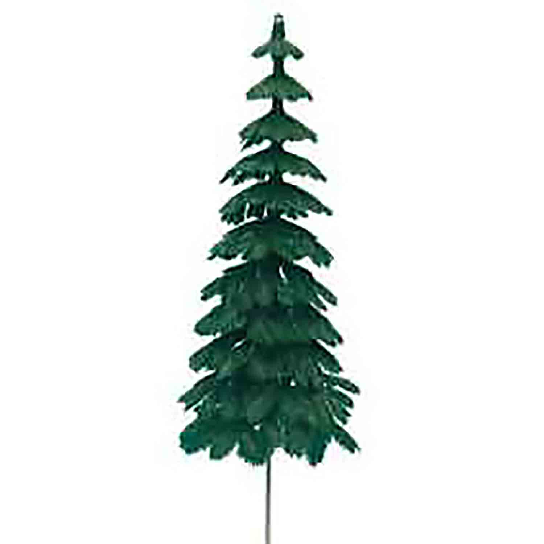 Large Evergreen Trees