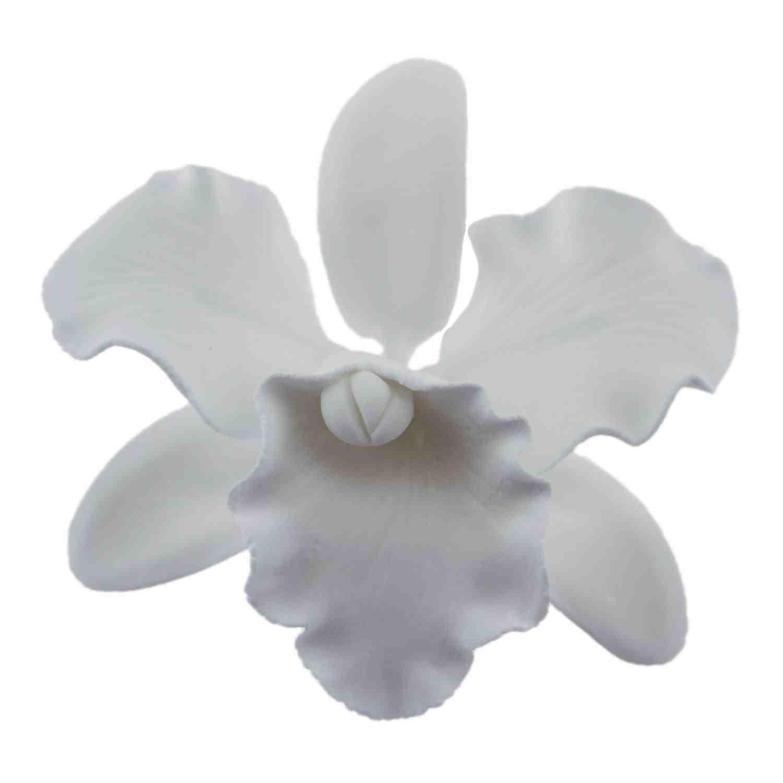 Medium White Cattleya Gum Paste Flower