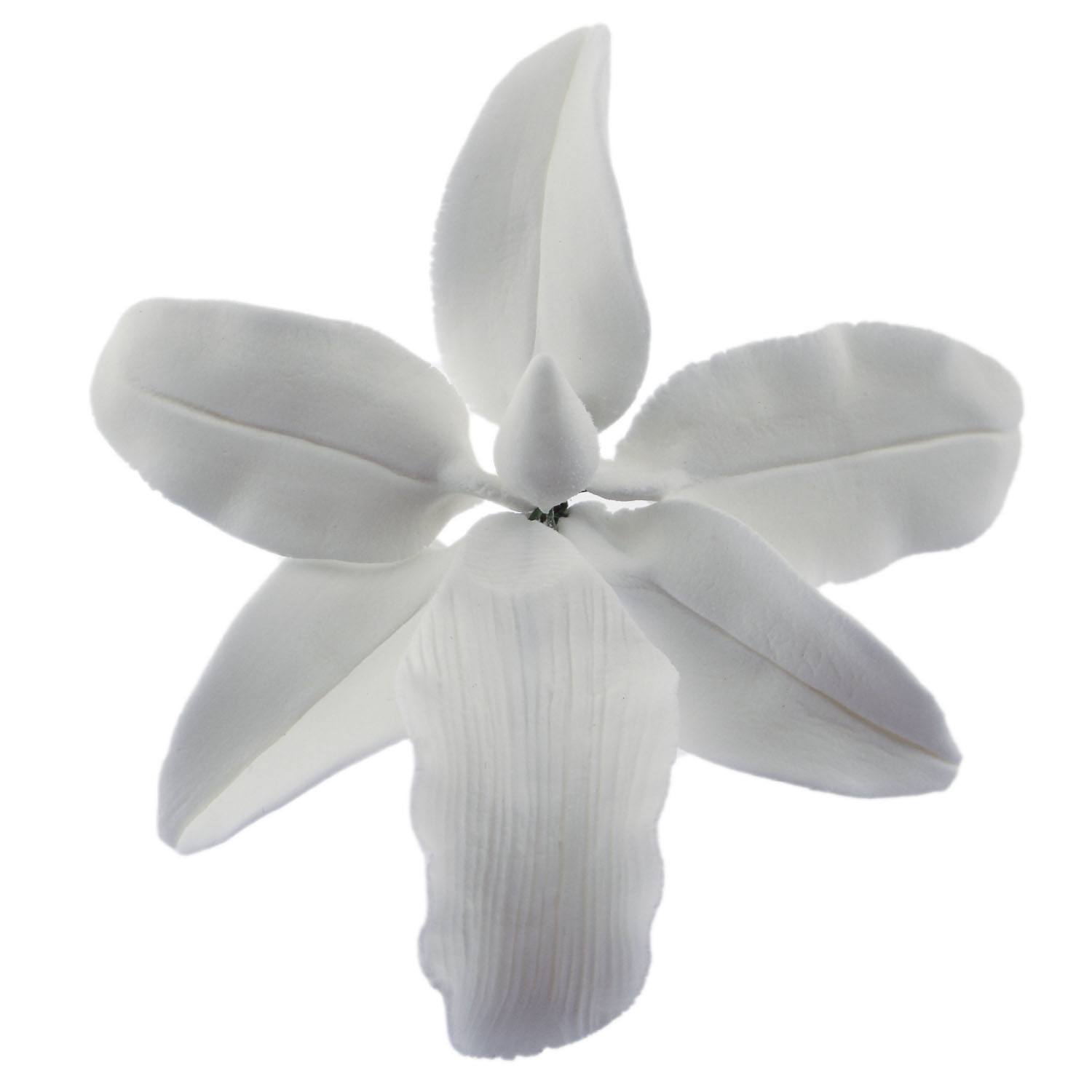 White Vuylstekeara Orchid Gum Paste Flower