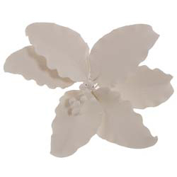 Large White Gum Paste Casablanca Lily
