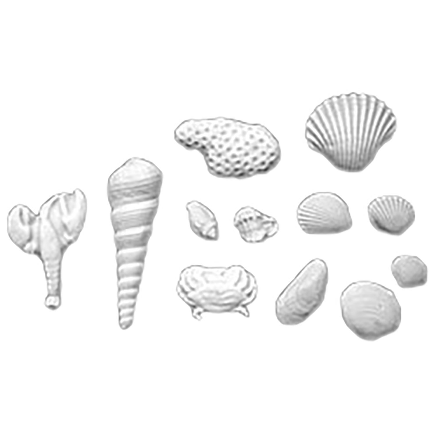 White Fondant Sea Shell Assortment