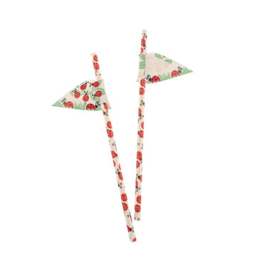 Red Ladybugs Paper Straws