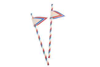 Red and Blue Stripes Paper Straws