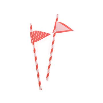 Red Stripes Paper Straws