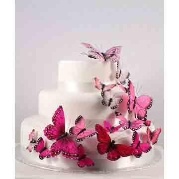 Blushing Pink Butterfly Set
