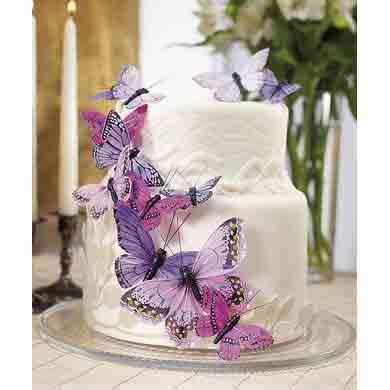Purple Butterfly Set