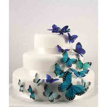 Something Blue Butterfly Set