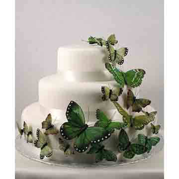 Garden Green Butterfly Set