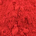 Poinsettia Petal Dust