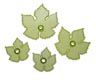 Gumpaste Cutter-Grape Vine Leaf Set