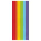 Rainbow Large Party Bags