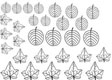 Gelatin Veining Sheet- Leaf 3