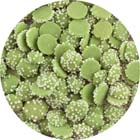 Bright Green Mint Drops