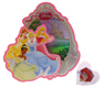 Cake Decorating Kit - Disney Princess
