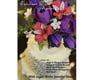 Dontz - Fabulous Floral Arranging DVD