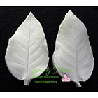 Small Rose Leaf Veiner Set