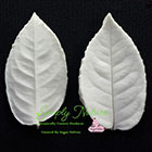Medium Rose Leaf Veiner Set