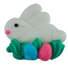 Icing Layons - Bunny with Eggs