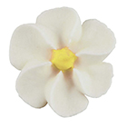 Royal Icing Flowers - Tiny White