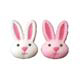 Dec-Ons® Molded Sugar - Sweet Bunnies