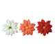 Dec-Ons® Molded Sugar - Poinsettia Assortment