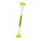 Lime Green Stamens - Medium