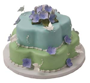Petal Shaped Butterfly Cake