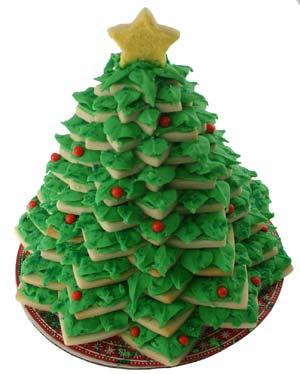 Mini Real Christmas Trees