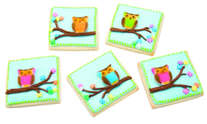 Bright Owl Cookies